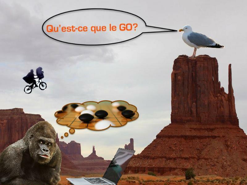 Qu'est-ce que le GO ?
